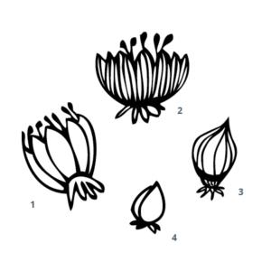 Motivstempel Blumen