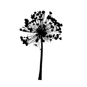 Motivstempel Lauchblume