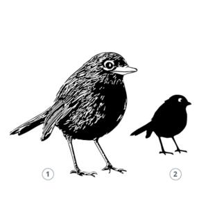 Motivstempel Vogel